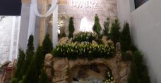 Kościół św. Rozalii w Skorzeszycach